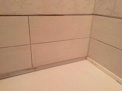 Alicatado interior de la ducha